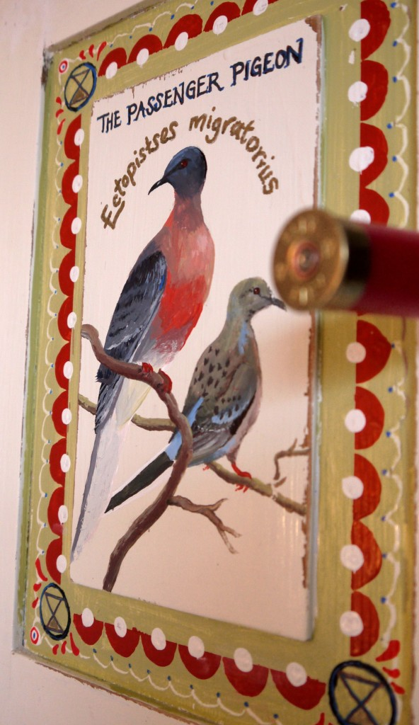 Zoografika Marthas Flock 3