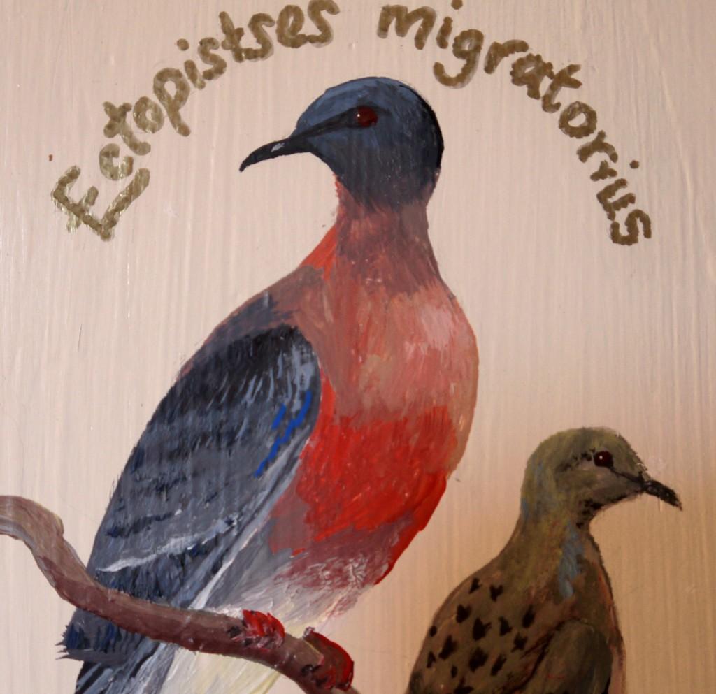 Zoografika Marthas Flock 5